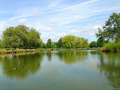 Mount Pond