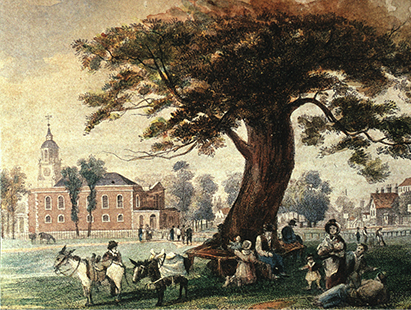 The Seat Tree